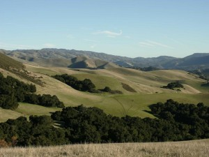 Carmel CA Homes News: Reality-check your retirement plans
