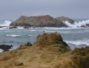 Bird Rock, Pebble Beach Courtesy of Wikipedia